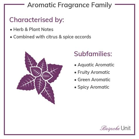 What Are Olfactive Families & Fragrance Wheels? Perfume