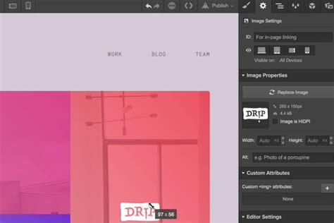 50 of the Best Tools for Building Websites in 2019