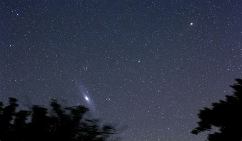 Andromeda Above the Trees   The Andromeda galaxy (M31) as